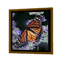 Butterfly Frame by Puybaret